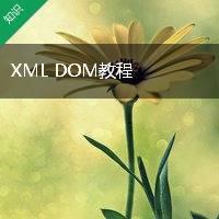 XML DOM教程